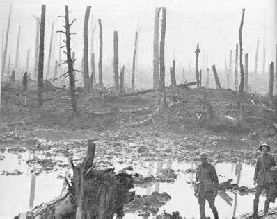 desolacion y guerra
